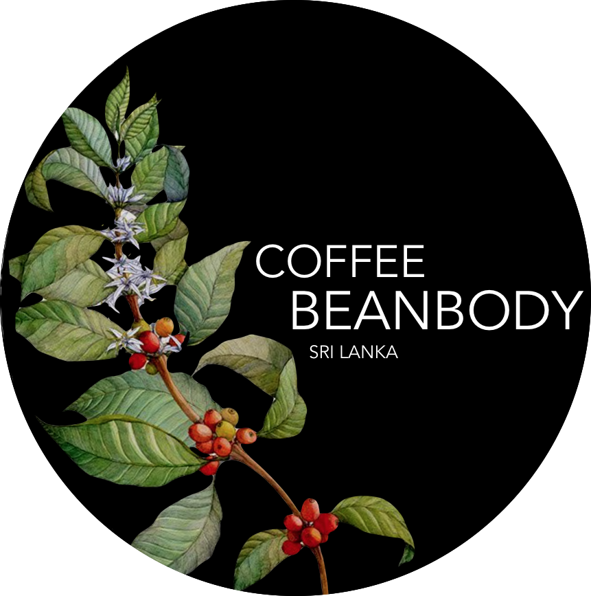 Coffee BeanBody
